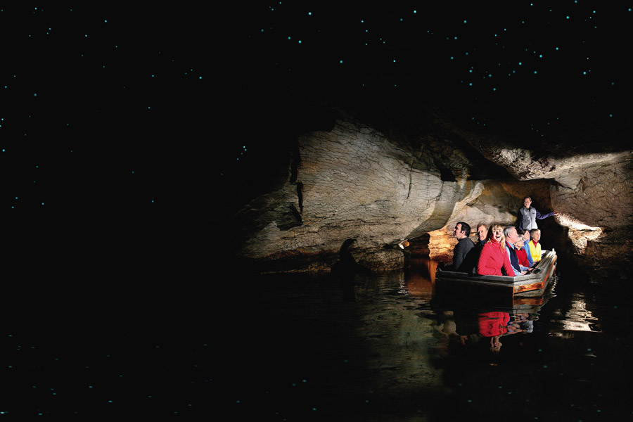 Te Anau Glowworm Caves New Zealand
