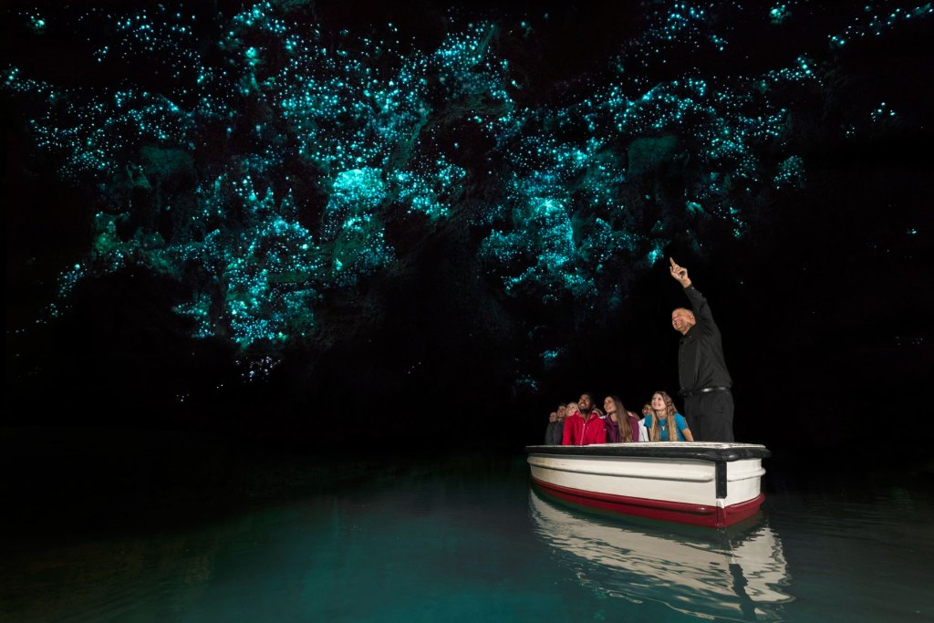 Waitomo Glowworm Caves guided tour New Zealand