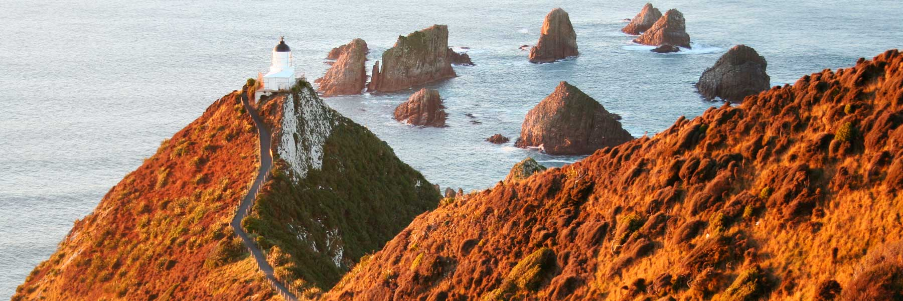 New Zealand Private Guided Tours