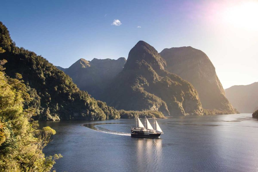 doubtful sound overnight cruise new zealand vacation packages