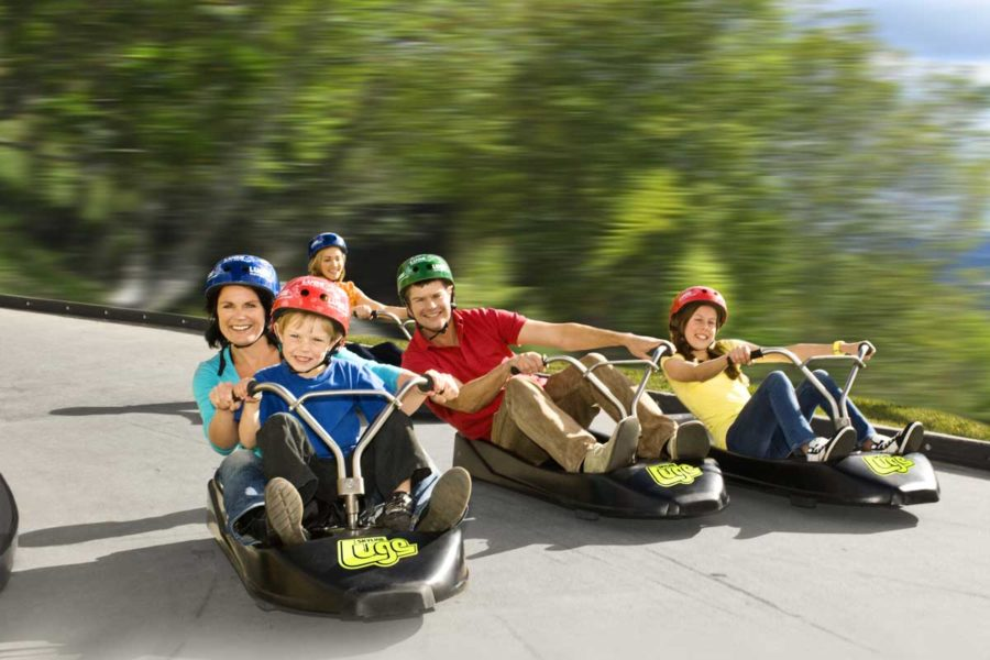 rotorua luge new zealand family vacation packages