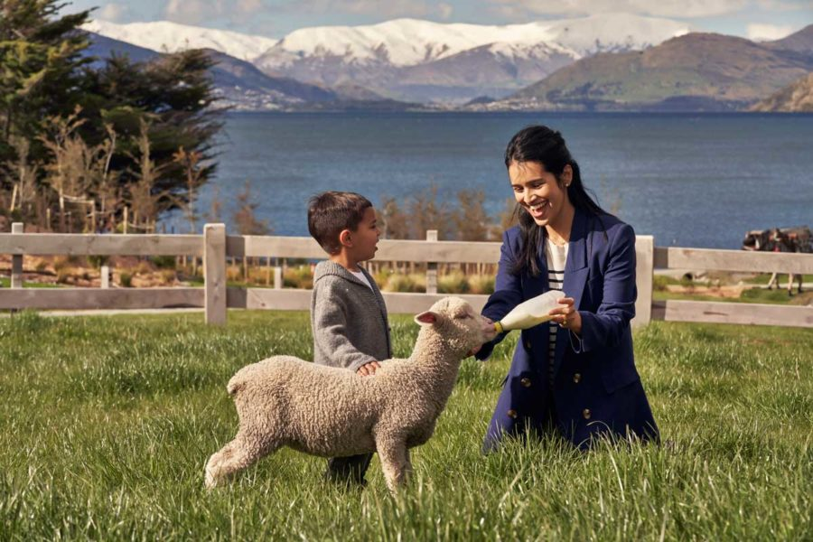 14 Day South Island Family Guided Tour